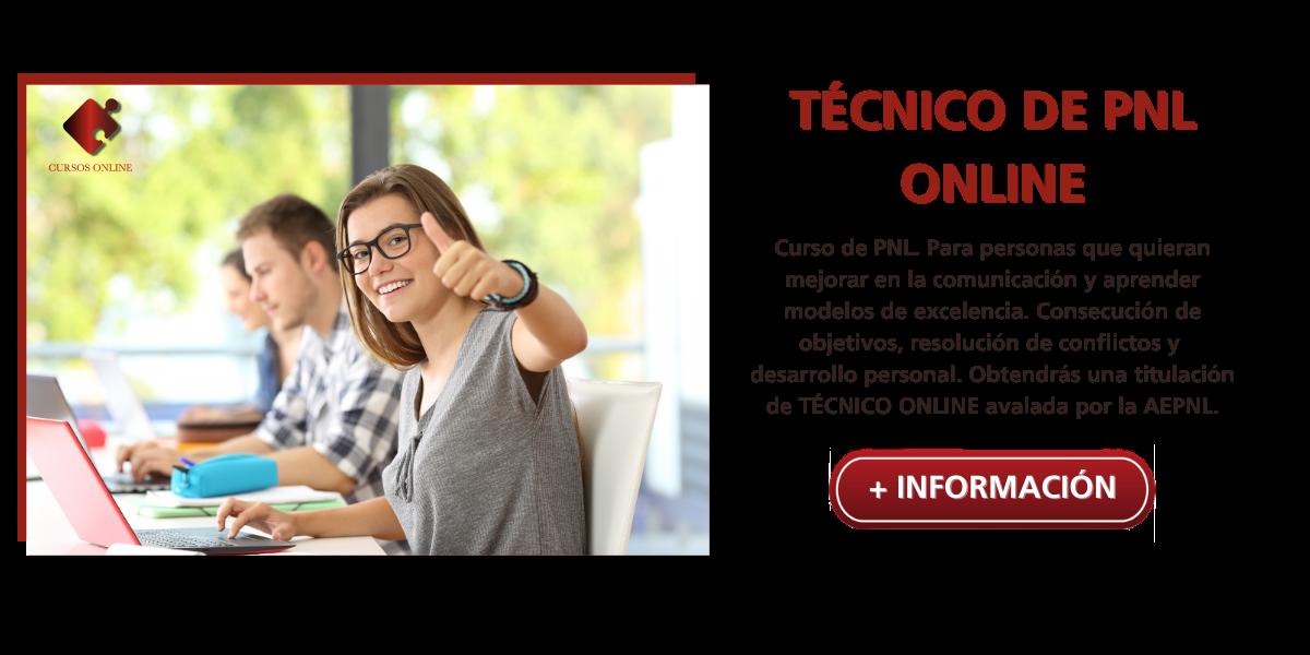 Técnico en pnl online